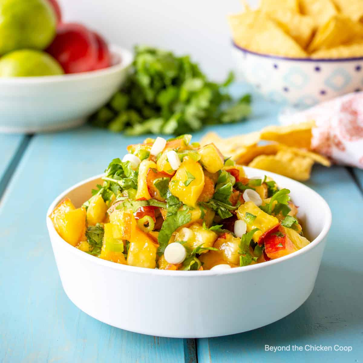 A bowl filled with peach salsa.