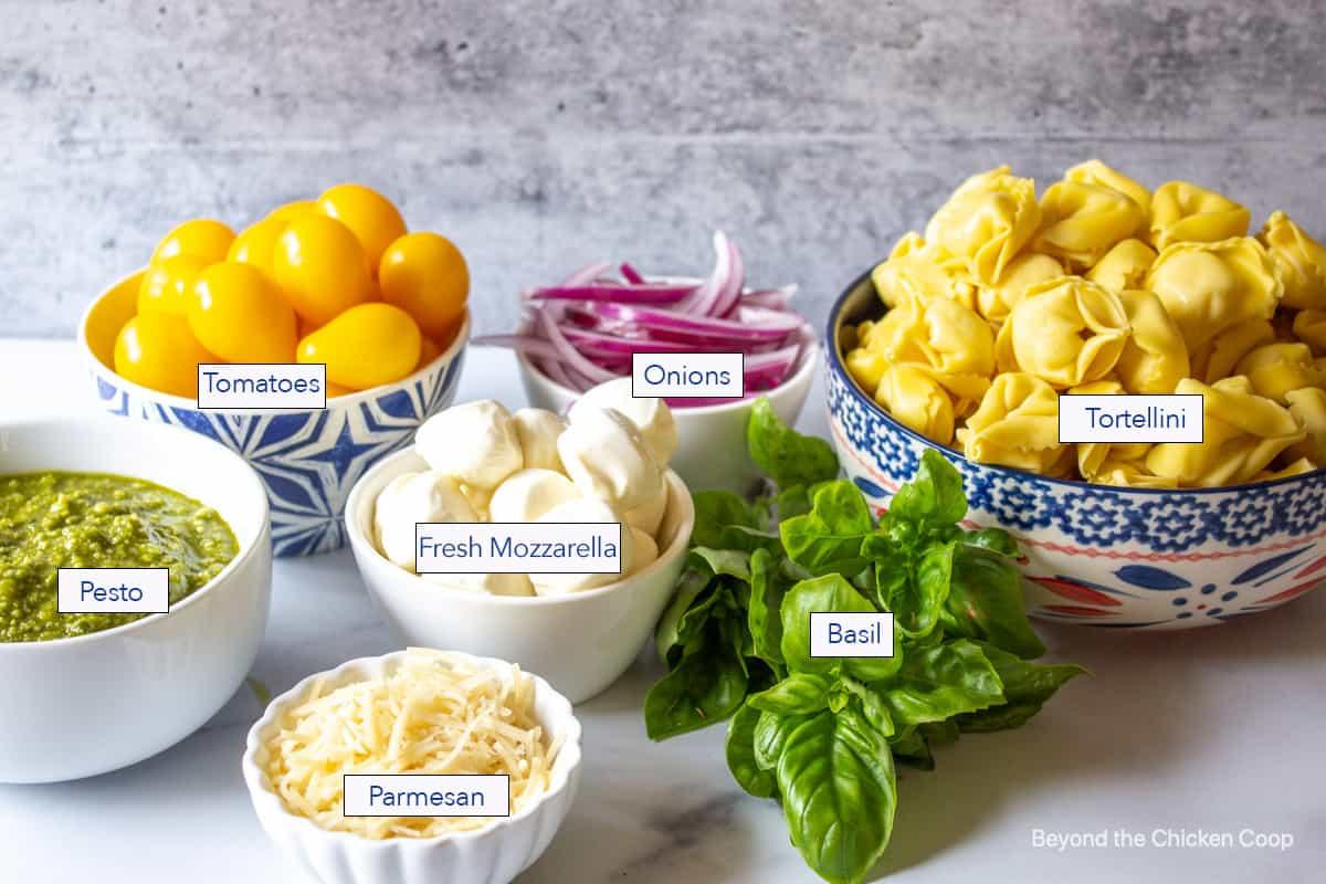 Ingredients used for making tortellini salad.