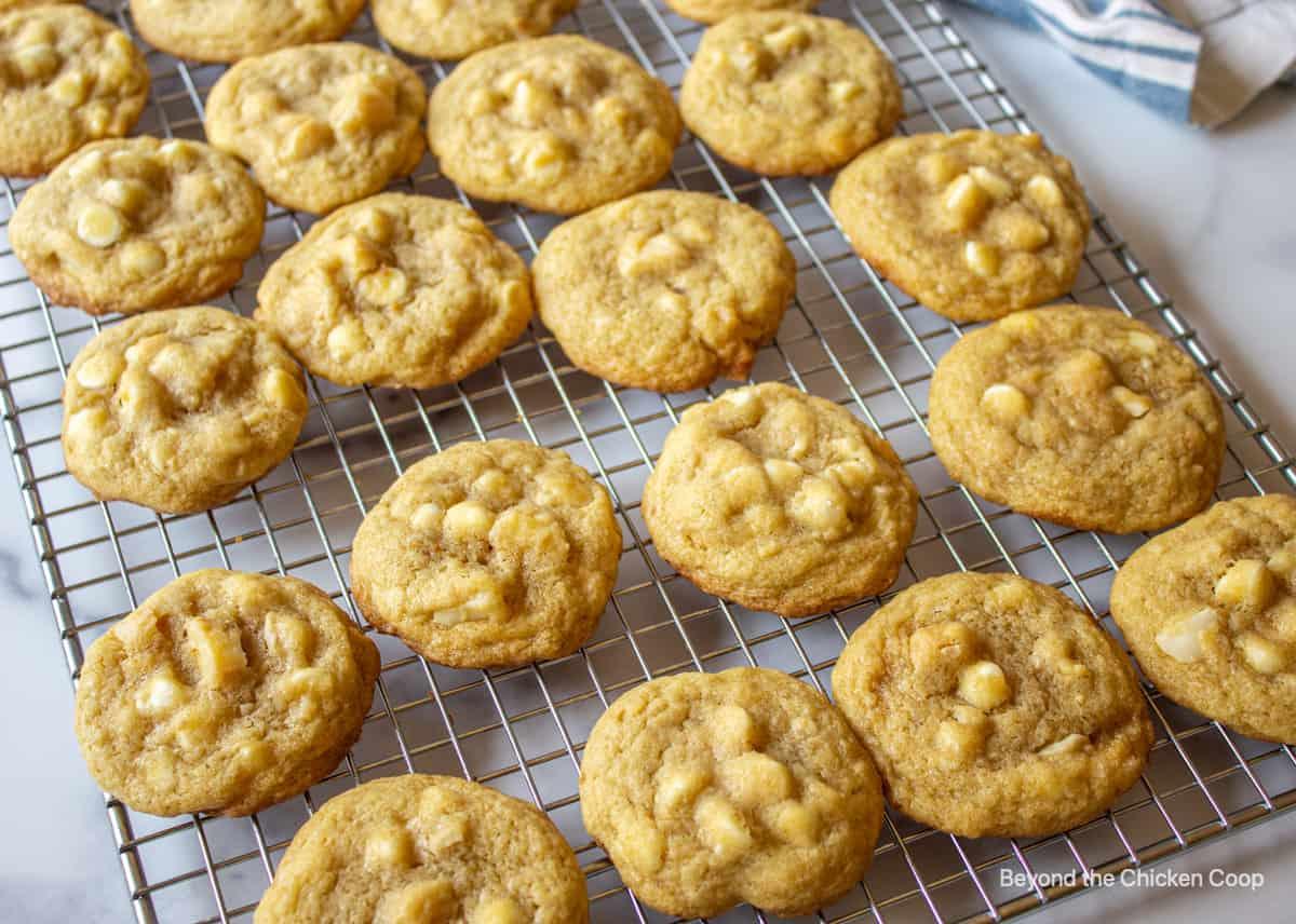 Cookies on a baking rack.